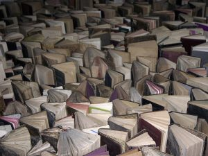 Mar de libros-3