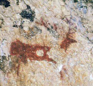 Ciervo en cueva de Arpán