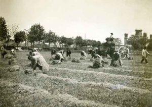 1930-La granja